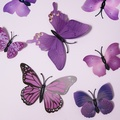 Pack of 3 Assorted Butterfly Magnets